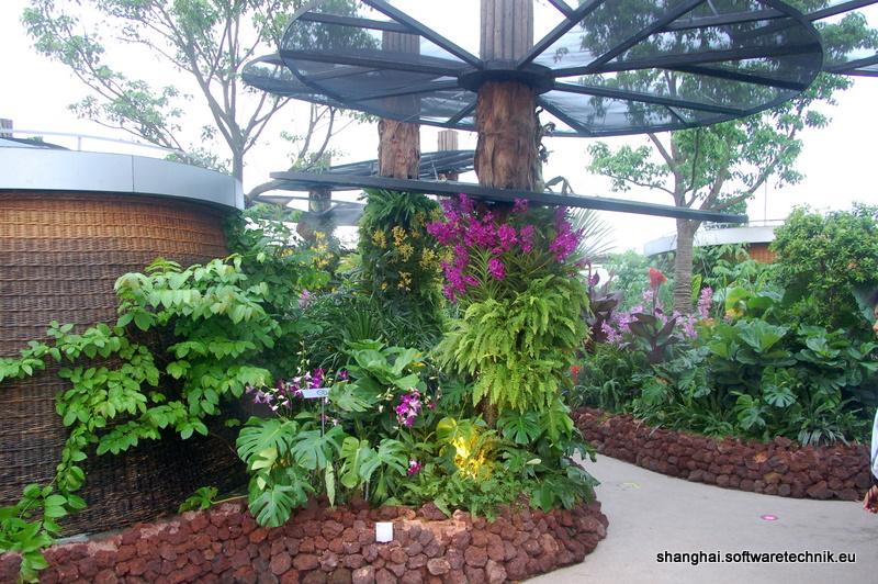 Der Dachgarten
