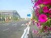 Straße auf der EXPO