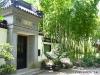 Bambus-Wäldchen