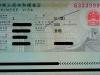 visa china z